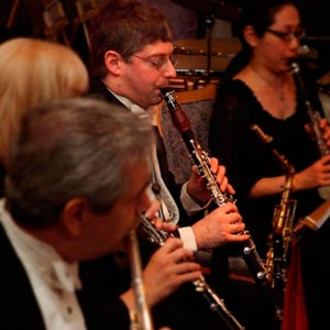 2010 Viennese Ball woodwind section